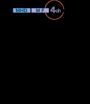 MHD_dia_4ch
